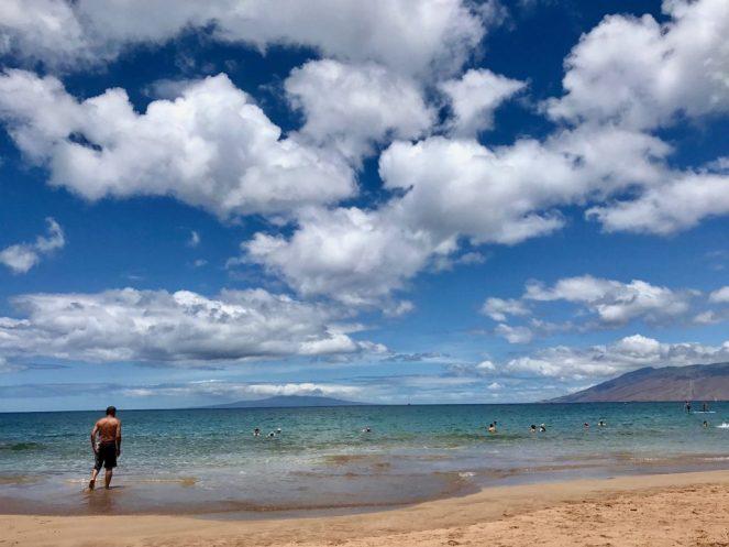 Maui Brewing Co, Paia, Maui, Hawaii, Travel, Kihei, Wailea, Ho'okipa, Keawakapu, Brekkie Bowls, North Shore Maui, South Shore Maui, Lahaina, Kaanapali, Haleakala, Road to Hana, Wailea Beach