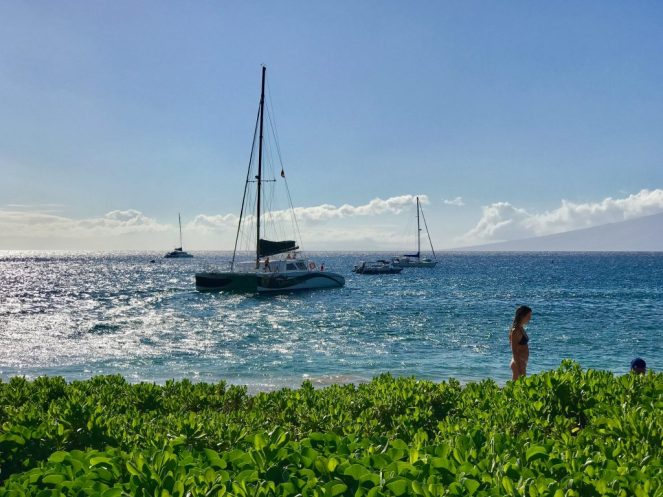 Maui Brewing Co, Paia, Maui, Hawaii, Travel, Kihei, Wailea, Ho'okipa, Keawakapu, Brekkie Bowls, North Shore Maui, South Shore Maui, Lahaina, Kaanapali, Haleakala, Road to Hana